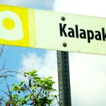 モクの道路標識
