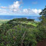 カウアイ島 ノウノウ山