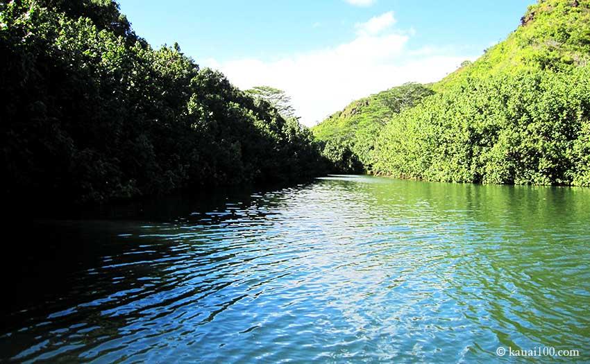 シダの洞窟へ続くワイルア川