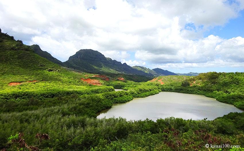 ハワイ州カウアイ島のメネフネ・フィッシュ・ポンド