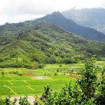 カウアイ島 ハナレイ渓谷展望台