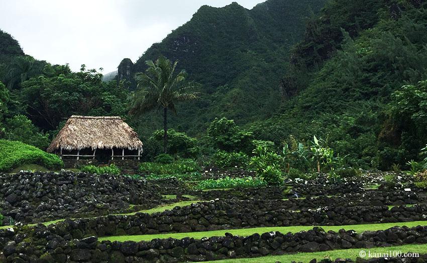 ハワイ州カウアイ島のリマフリガーデン