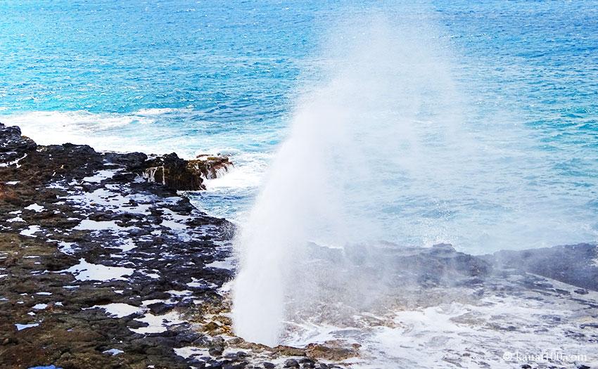 ハワイ州カウアイ島の潮吹き岩