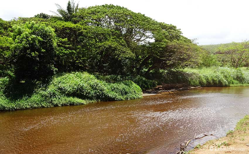 カウアイ島 ワイメア川